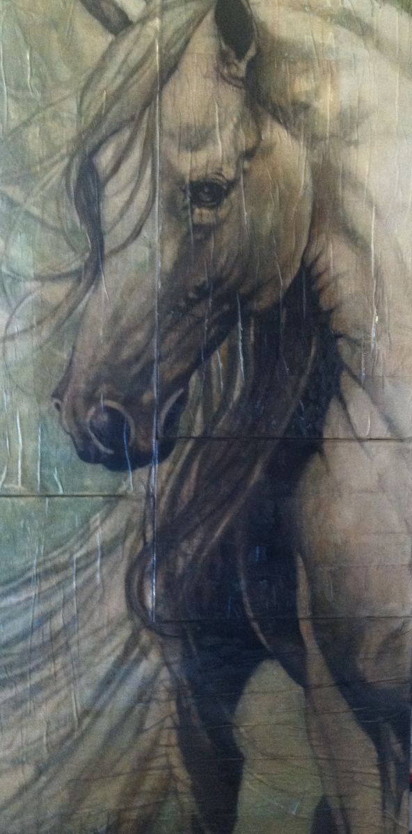 1576 best images about horses on pinterest for Art 1576 cc
