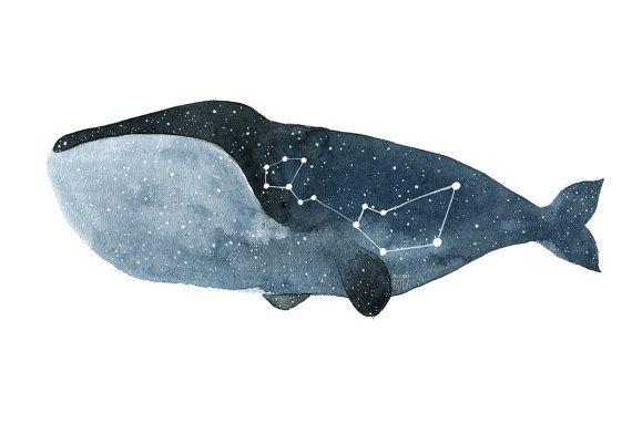 Ballena arte grabado acuarela ballena Ballena cartel estrella constelación…