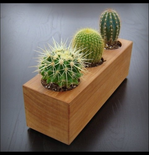 Bring the outdoors in with this little Modern Cactus Planter. It's so cute and simple. I'd love to dress up my desk with this planter. #design #concepts #ideas http://goo.gl/IT9Op