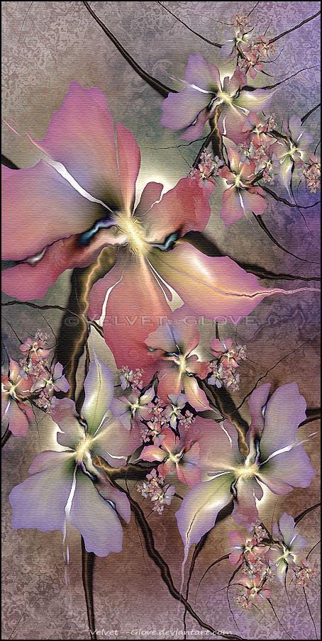 Silk Blush by Velvet Glove