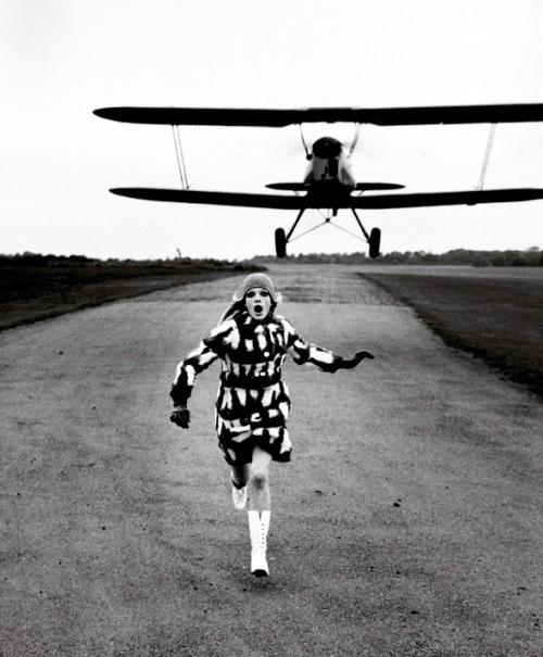 Helmut Newton sexe pause au Grand PalaisPhotos, Helmutnewton,  Carriage Dogs, Art, British Vogue, Fashion Photography,  Coaches Dogs, Dalmatians, Helmut Newton