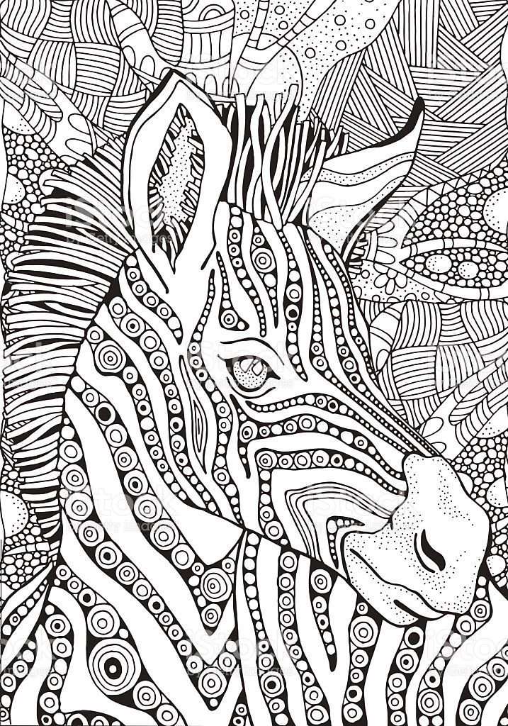 Coloring Book Page For Adult And Children Zebra In Doodle Style