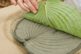 Leaf stepping stones from a hosta leaf