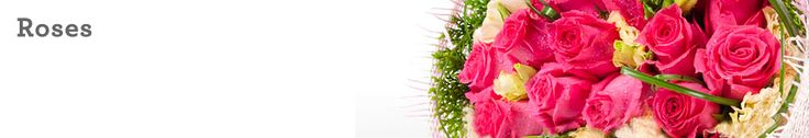 NetFlorist is Singapore's largest sameday gift & flower delivery service. Order flowers - roses online today.