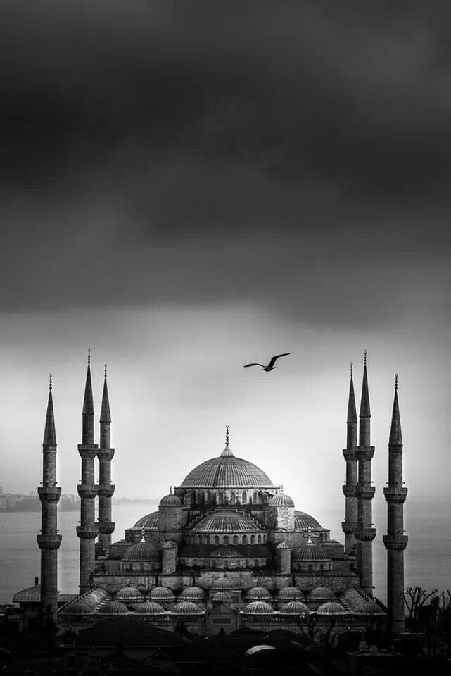 "The Süleymaniye Mosque, built on the order of Sultan Süleyman (Süleyman the Magnificent), ""was fortunate to be able to draw on the talents of the architectural genius of Mimar Sinan"".The construction began in 1550 and finished in 1558."