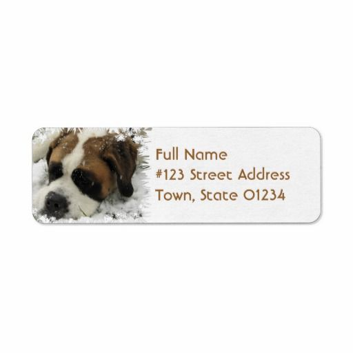 >>>Coupon Code          St Bernard Return Address Label           St Bernard Return Address Label lowest price for you. In addition you can compare price with another store and read helpful reviews. BuyDiscount Deals          St Bernard Return Address Label Online Secure Check out Quick and...Cleck Hot Deals >>> http://www.zazzle.com/st_bernard_return_address_label-106677640959468196?rf=238627982471231924&zbar=1&tc=terrest
