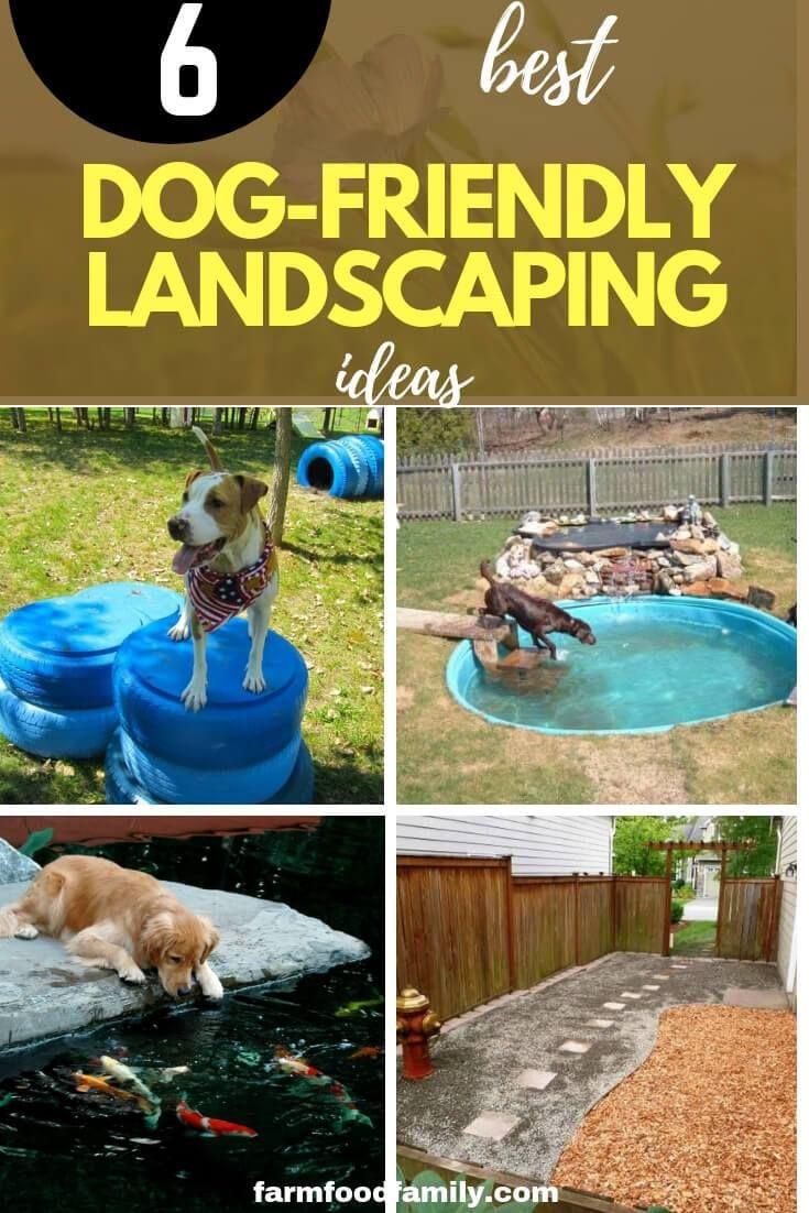 24 Great Dog Friendly Backyard Landscaping Ideas Designs For 2021 Dog Backyard Dog Friendly Backyard Dog Friends