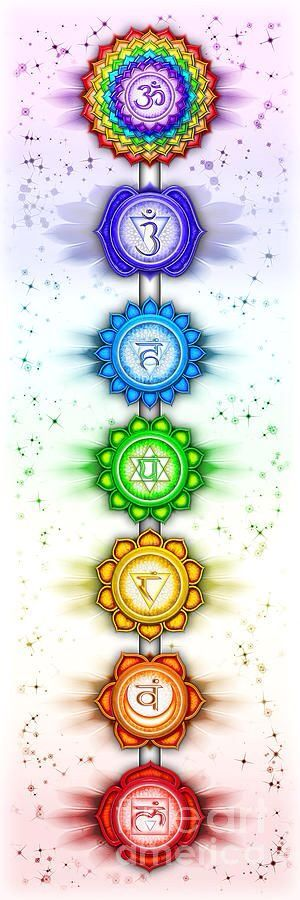 The Seven Chakras                                                                                                                                                                                 More
