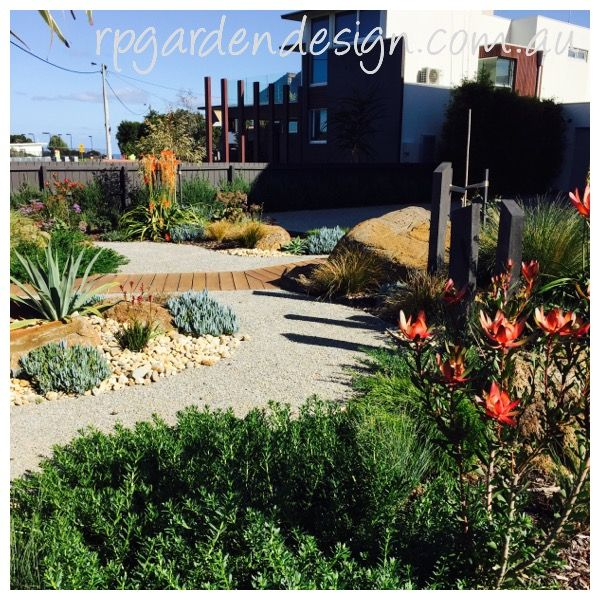 Coastal garden filled with colourful native plants. www.rpgardendesign.com.au