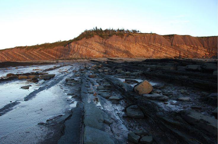 Joggins Fossil Cliffs UNESCO World Heritage Site | novascotia.com