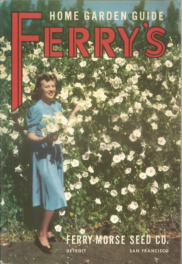 Ferryu0027s Home Garden Guide : Ferry Morse Seed Company : Free Download U0026  Streaming