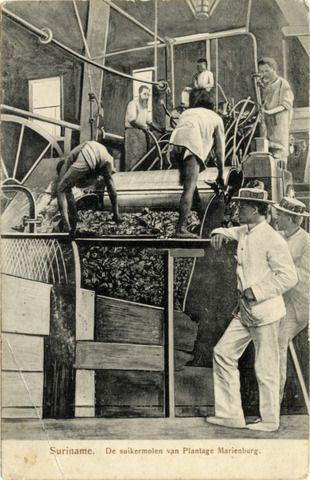 Suriname. De suikermolen van Plantage Marienburg. (1900-1904)