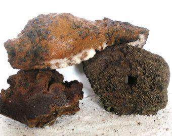 Aquarium Cichlid Shrimp Cave Rocks Porous Plant Friendly and All Water Safe…