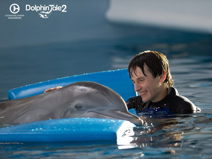Witness Winter and Hope's inspirational story of triumph in Dolphin Tale 2.