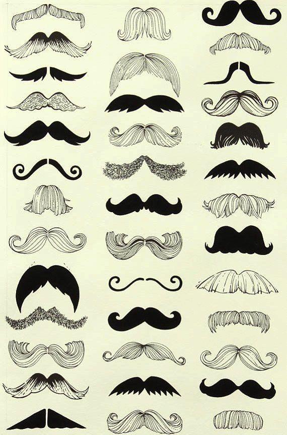 Pépinière le drap noir moustache