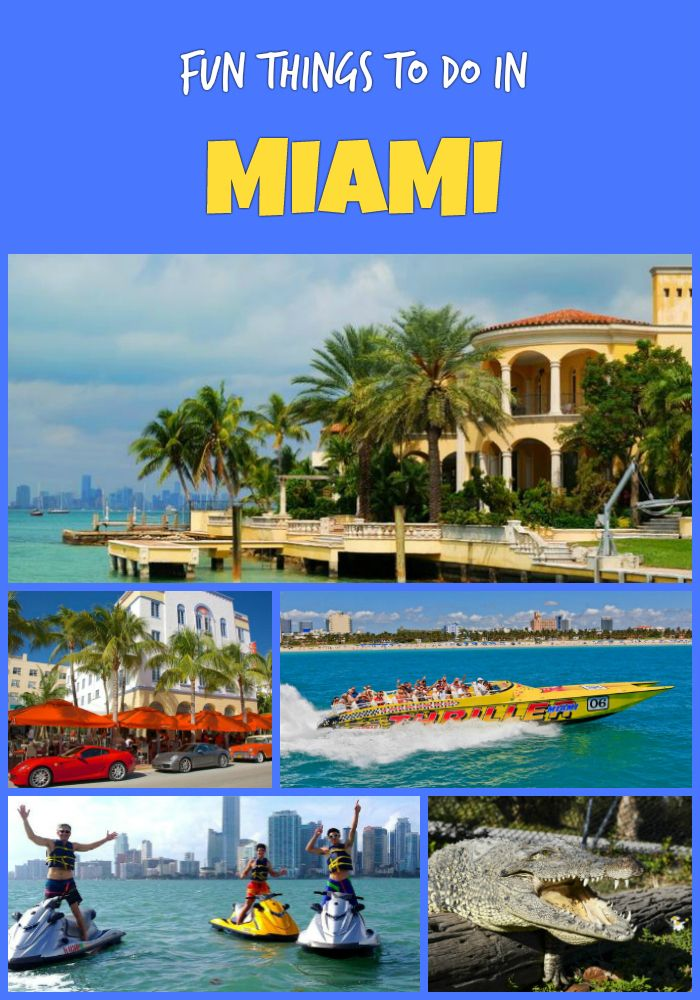 fun things to do in miami in 2018 activities and tours travel rh pinterest com
