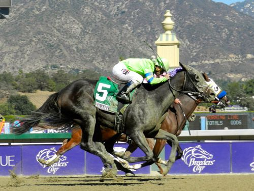 17 Best Images About Horse Racing On Pinterest Parks