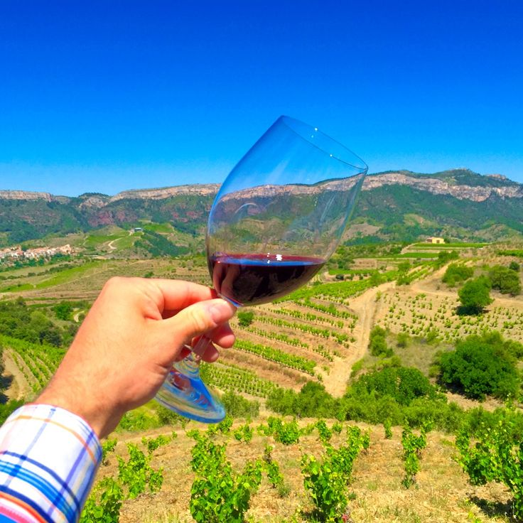 The Spanish Wine Region of Priorat, Spain is recognized as one of the finest wine producing regions in the world. Learn about Priorat wine in Spain.