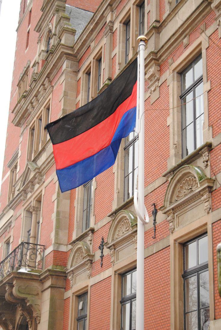 Rathaus Leer (Ostfriesland): Die Flagge Ostfrieslands weht im Wind!