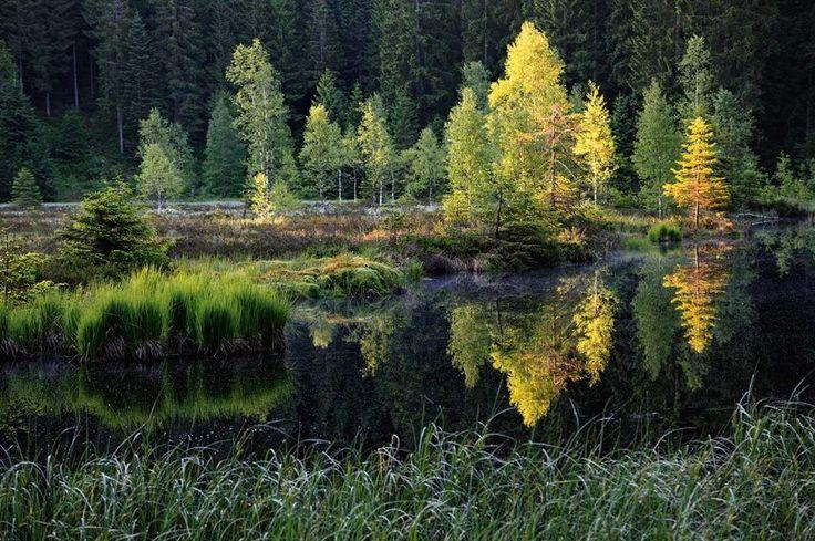 Buhlbachsee: Drei verwunschene Karseen  - auch der Huzenbacher und der Wilde See - finden sich im südlichen Teilgebiet des Nationalparks.
