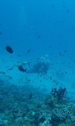 What is hidden in the depth of Maldives?