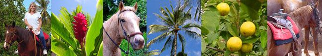 Happy Trails Horseback Riding - On Oahu's North Shore.  Allows kids 6 and up to ride on trails.