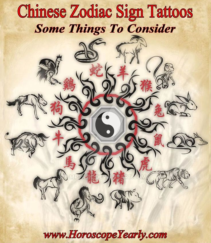 Chinese Zodiac Sign Tattoos  Some Things To Consider  Are you interested in Chinese zodiac sign tattoos --perhaps even thinking of getting one for yourself? There are many exciting possibilities when it comes to Chinese zodiac sign tattoos. The fact ...