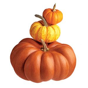 10 Things to Know About Pumpkins | CookingLight.com