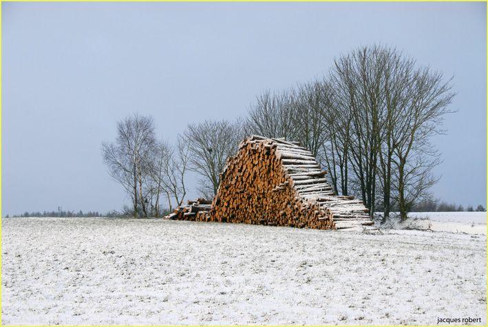 les ardennes belges