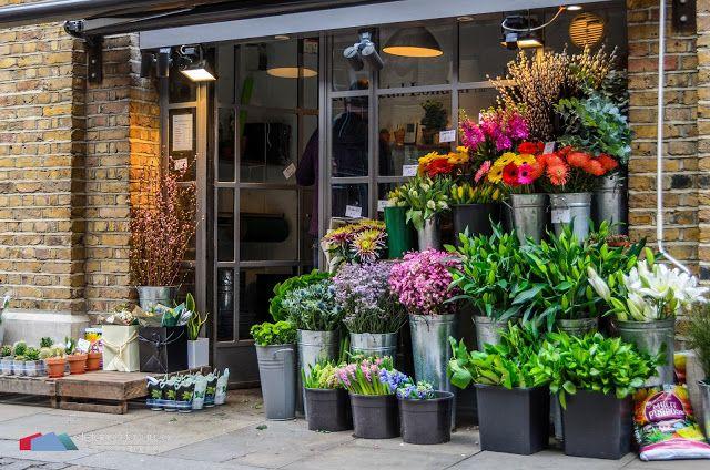 Stefanodav's Shot-Blog: Flower shop...