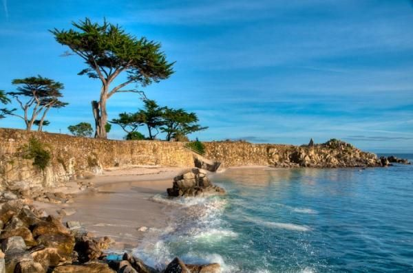 The Best place for a romantic picnic: Lovers Point Park and Beach in Pacific Grove, CA  Choose from either the large grassy park, or the sandy sheltered cove.  Either one is a winner!