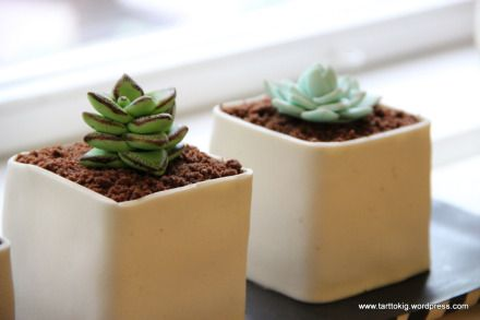 How to Make Potted Gumpaste Succulents - Tutorial - Cake Central