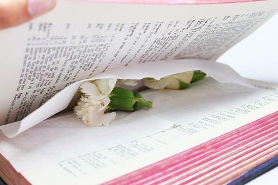 Cómo prensar flores y hojas - wikiHow                                                                                                                                                                                 Más