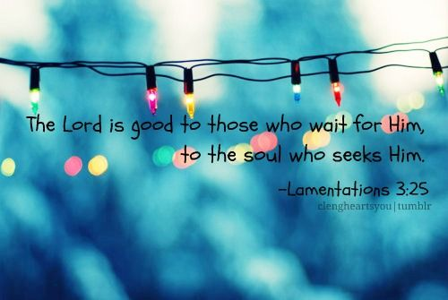 The Lord is good to those who wait for Him, to the soul that seeks Him.  Lamentations 3:25