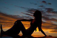 Silhouet zeemeermin kant knie profiel Royalty-vrije Stock Fotografie