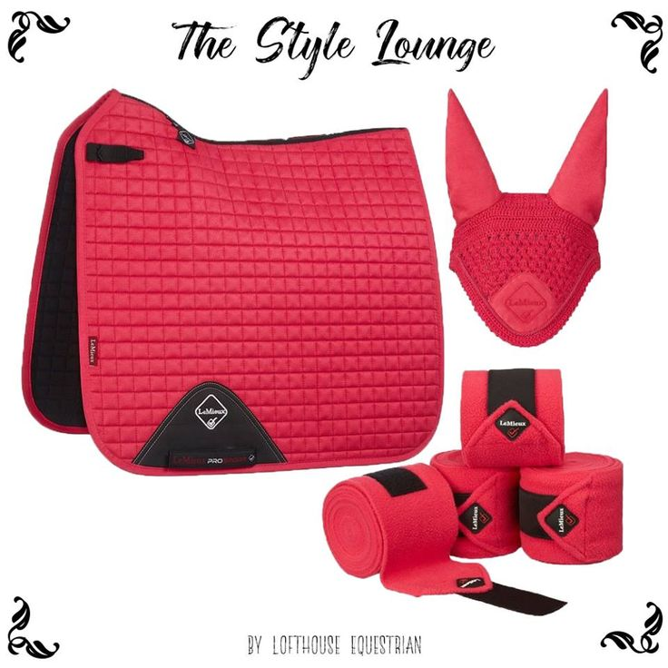 Our latest Style Lounge is now out! Learn all about this gorgeous Fuchsia pink matchy numnah set from LeMieux! #numnah #saddlepad #musthave