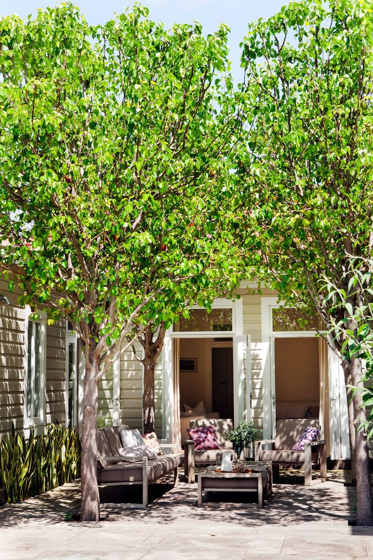 287 best courtyards images on pinterest | gardens, courtyards and