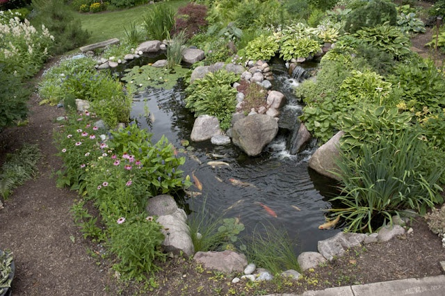 Dream pond.Backyards Ponds, Water Gardens, Water Features, Modern Gardens Design, Koi Ponds, Interiors Design, Dreams Ponds, Landscapes, Fish Ponds