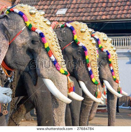 9 best elephants decorated images on Pinterest   Elephants ... - photo#26