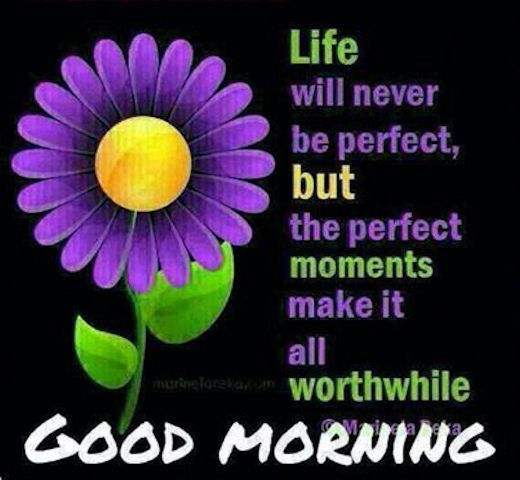 Good Morning Life Quote