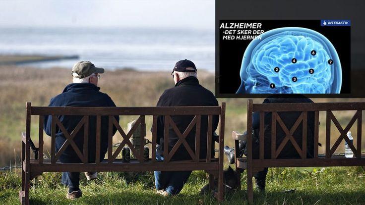 GRAFIK: Hjerneforskere kan knække koden til Alzheimers | GO'