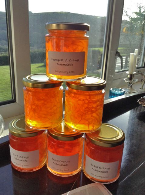Angela Hickmans marmalade successes