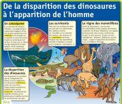 De la disparition des dinosaures à l'apparition de l'homme - Le Petit Quotidien, le seul site d'information quotidienne pour les 6 -10 ans !