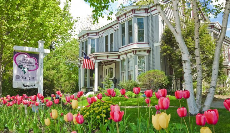Camden Maine Bed And Breakfast Reviews