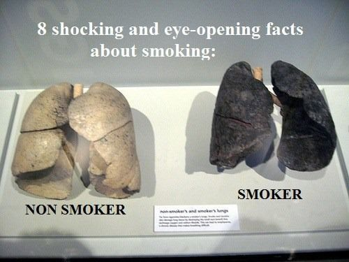 What's in a Cigarette? http://rawforbeauty.com/blog/shocking-and-eye-opening-facts-about-smoking.html
