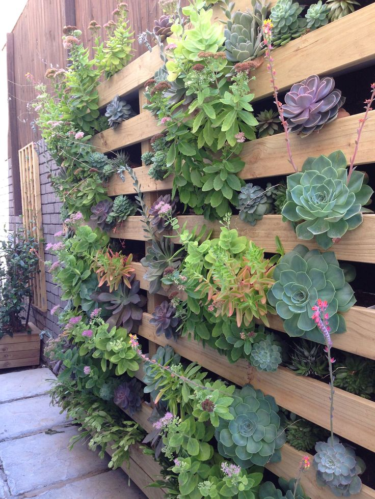 Vertical Garden installed at Greenpoint Project by ESTABLISHMENT www.establishment.co.za
