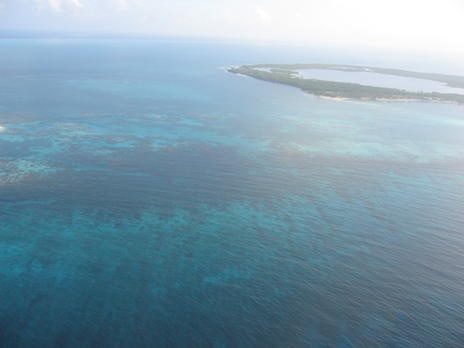 List of World Heritage in Danger: The coastal area of Belize is an outstanding natural system consisting of the largest barrier reef in the northern hemisphere, offshore atolls, several hundred sand cays, mangrove forests, coastal lagoons and estuaries. The system's seven sites illustrate the evolutionary history of reef development and are a significant habitat for threatened species.