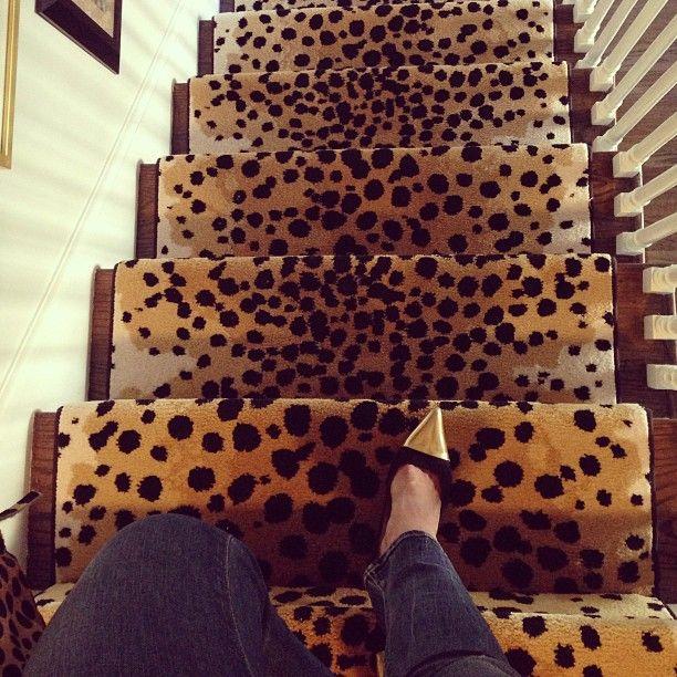 Best 25 staircase runner ideas on pinterest carpet for Leopard print carpet stair runner