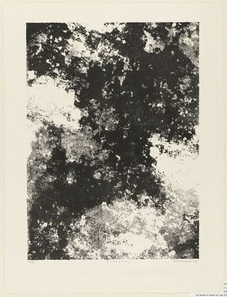 Jean Dubuffet. The Shade Tree (L'arbre d'ombre). 1959
