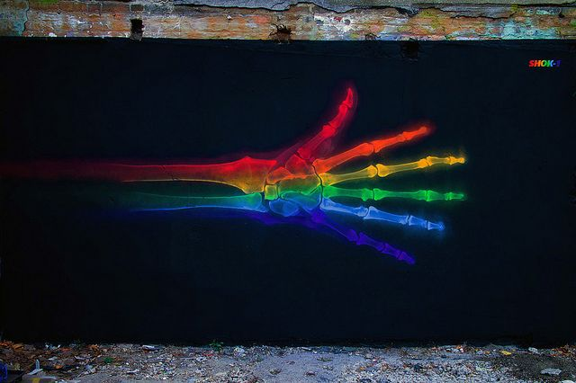 Rainbow Anatomy by Shok Oner. See more from the series on Colossal:  http://www.thisiscolossal.com/2013/07/shok-oner